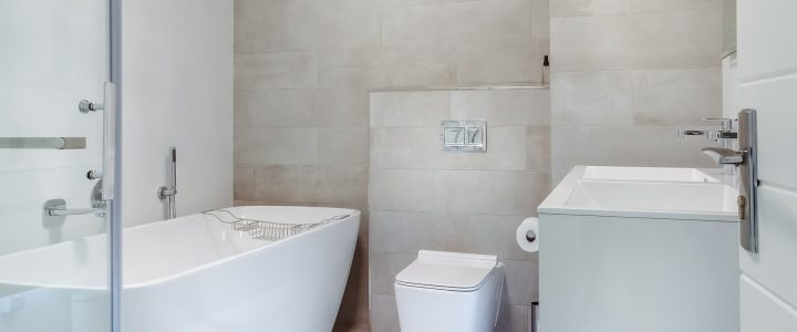 A Bathroom Renovation That says Wow